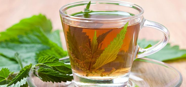 Nettle leaf is a wonderful health boosting herb & its tea is known to be a part of herbal medicine for long. Listed are nettle leaf tea amazing benefits you need to know.