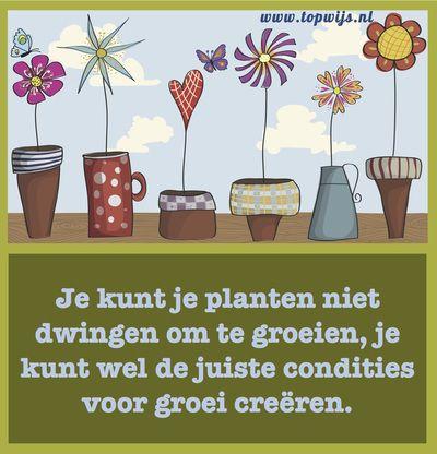 Onderwijsspreuk: Je kunt je planten niet dwingen om te groeien, je kunt wel de juiste condities voor groei creëren. #onderwijs www.topwijs.nl