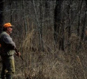 Learning rabbit hunting tips to get you started.. However, you should always stay in touch with professional hunters so that you can learn better skills.
