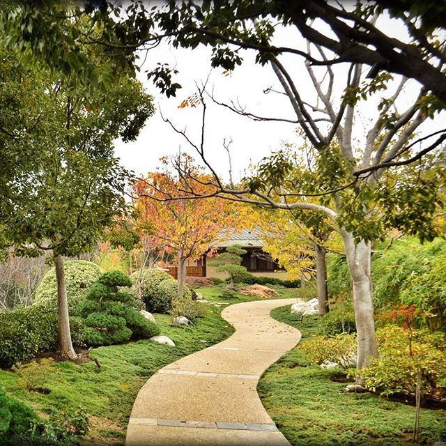 Peaceful path in the Japanese friendship garden