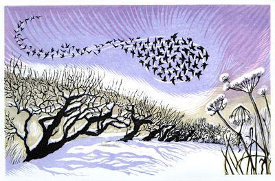 Niki Bowers - Midwinter Starlings