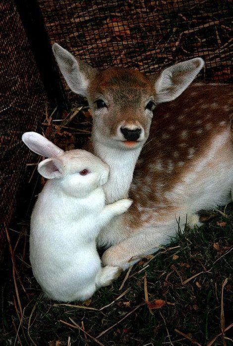 Diversity. #Creates beautiful and interesting friendships!