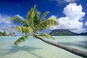 http://www.traveladvisortips.com/tahiti-vacation-packages-what-is-included/ - Tahiti Vacation Packages – What Is Included?