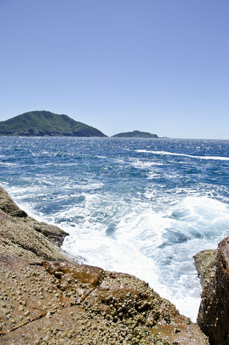 Tomaree Head Ocean Track: This is an amazing spot. To get here, you walk a little way up Tomaree Head, at Shoal Bay, then follow the ocean track signs (rather than the summit signs) and after about 10-15 minutes you reach this stunning location, where you can just sit on a rock and gaze out to sea. The water was so blue today and the rock faces and geology are breathtaking. #portstephens #tomareehead