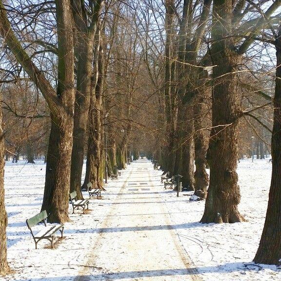 Park #perfecthome #blogger #blog #inspiration #interior #homeinterior #decorated #homedesign