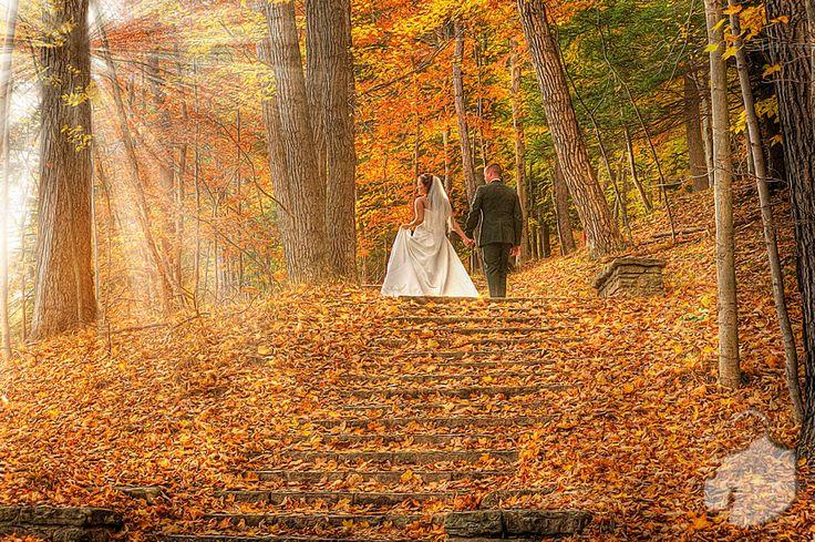 New York City & Destination Wedding Photographer - Fall Letchworth ...