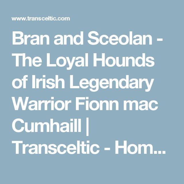 Bran and Sceolan - The Loyal Hounds of Irish Legendary Warrior Fionn mac Cumhaill | Transceltic - Home of the Celtic nations
