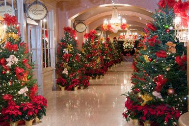 Christmas Tree Lane at the Royal Sonesta, New Orleans - Provided by the Royal Sonesta