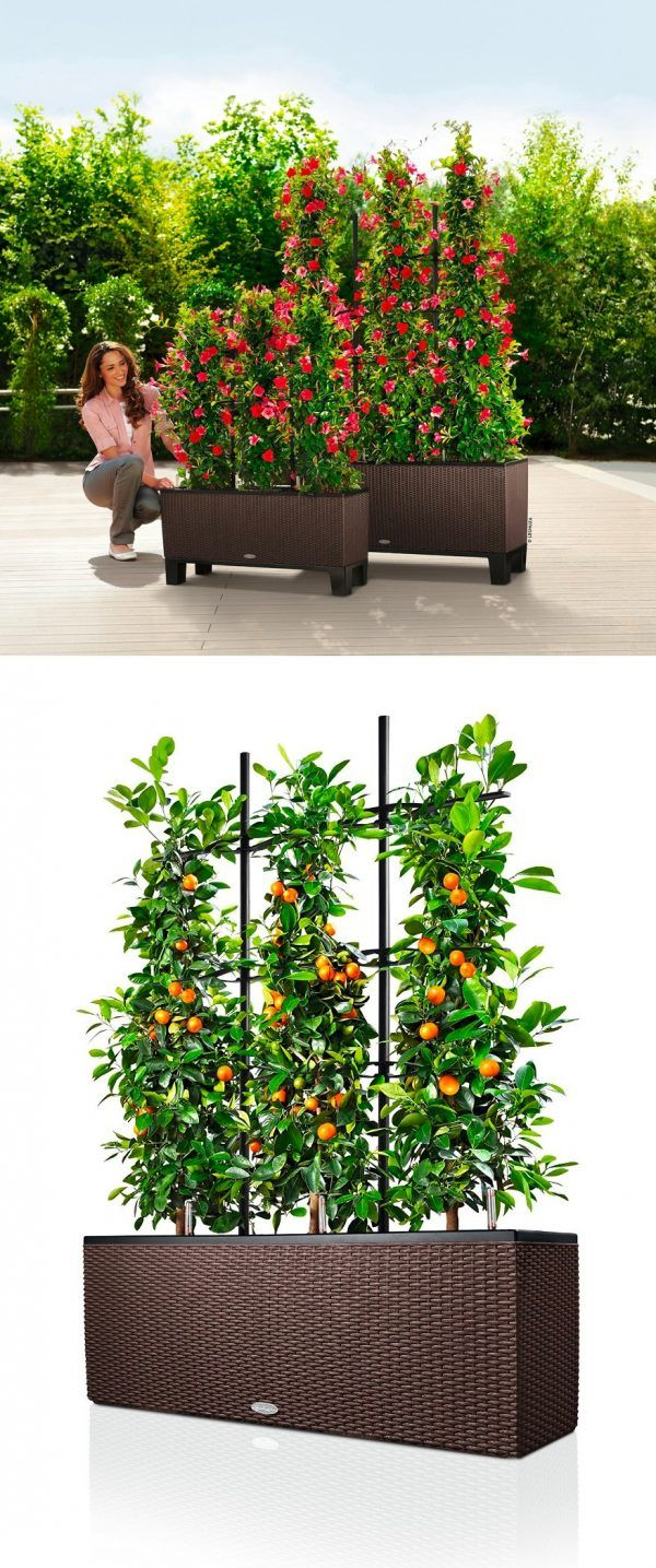 Urban gardening planters - The Big List Of Self Watering Planters For Stylish Gardening Anywhere