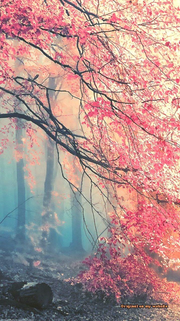Wallpaper Samsung Vintage Fantasy Natural Lock Screen 720 1280 Samsung Galaxy Clic Nature Backgrounds Iphone Tree Wallpaper Iphone Autumn Phone Wallpaper