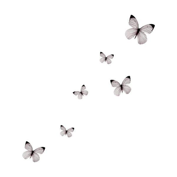 Como deixar uma foto em preto e branco. …