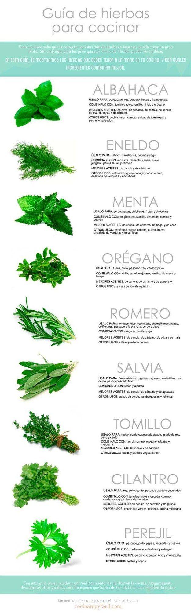 Nadie sabrá mejor que tú cómo usar esas deliciosas hierbas de olor. | 20 Infográficos que te servirán si eres un novato en la cocina
