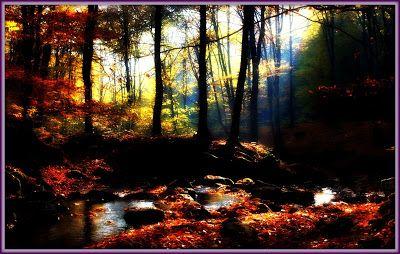 Γη και Ελευθερία.: Λυπούμαι γιατί άφησα να περάσει ένα πλατύ ποτάμι.....