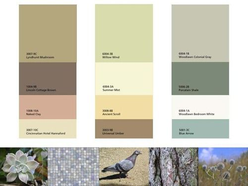 Living Room Paint Color Ideas With Accent Wall Colour Palettes