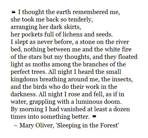 the journey poem mary oliver pdf