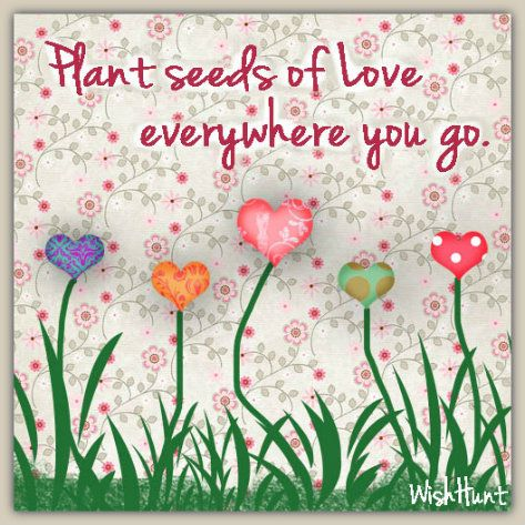 Plant seeds of love everywhere you go.