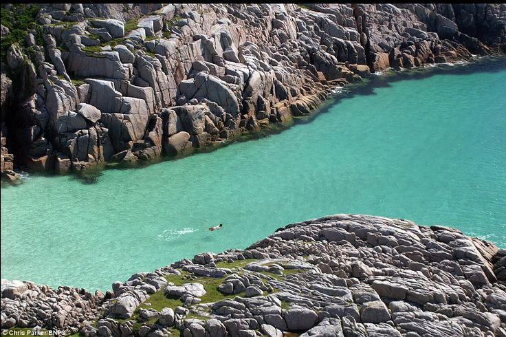 Scotland, amazingly: A swimmer at a cove near Knockvologan on the Isle of Mull, off the west coast of Scotland