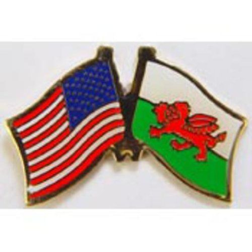 "American & Wales Flags Pin 1"" by FindingKing. $8.50. This is a new American & Wales Flags Pin 1"""