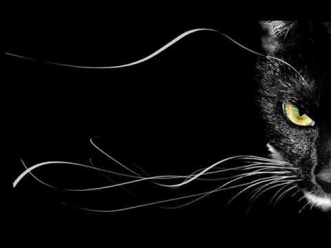 Black and White Pictures and Wallpaper: Pure Black Wallpapers