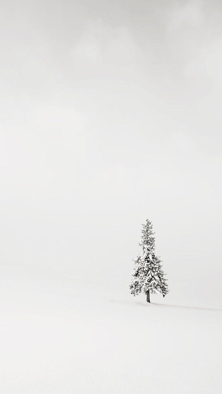 iPhone, Tree, Simple, Minimalistic, White Wallpaper