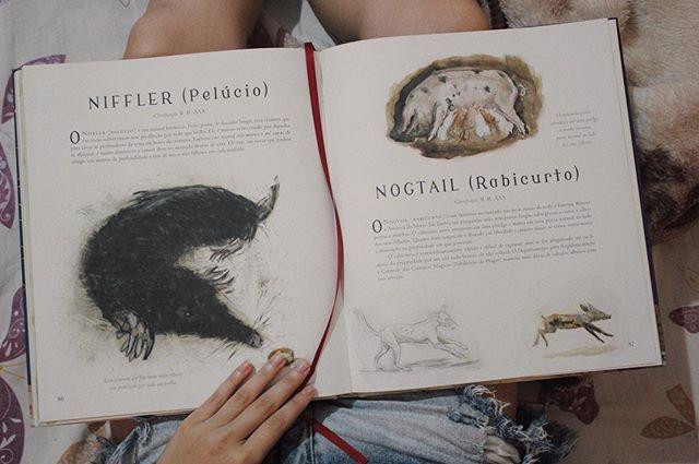 Postando Essa Foto De Paginas Do Meu Livro Animais Fantasticos E