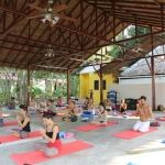 Yoga Teacher Training and Yoga Certification Course in Thailand