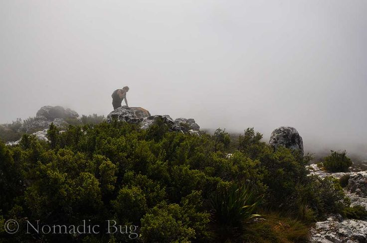 Gorilla's in the mist, Table Mountain, Cape Town, South Africa  Landmarks Nomadic Existence