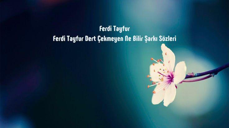 Ferdi Tayfur Dert Çekmeyen Ne Bilir sözleri http://sarki-sozleri.web.tr/ferdi-tayfur-dert-cekmeyen-ne-bilir-sozleri/