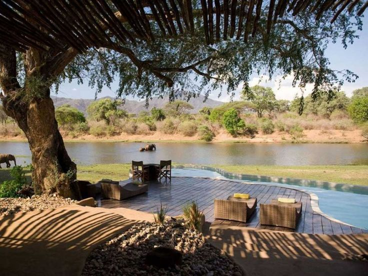 At the Chongwe River House in Zambia, you can relax at the pool while watching animals come to bathe and drink in the nearby Chongwe River