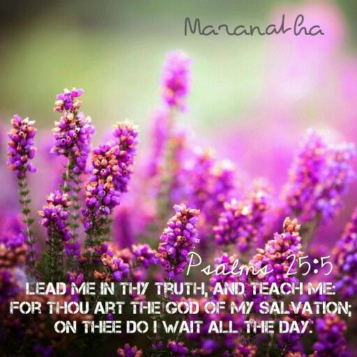 #Psalms 25:4-5 (KJV)  Shew me thy ways, O LORD; teach me thy paths. Lead me in thy truth, and teach me: for thou art the God of my salvation; on thee do I wait all the day.  #MARANATHA