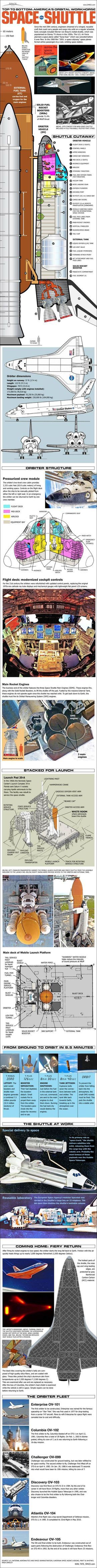 NASA's Space Shuttle – From Top to Bottom (Infographic)  Karl Tate, SPACE.com