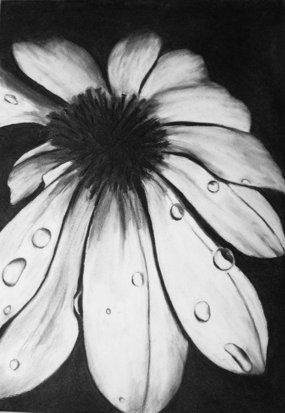 Original charcoal drawing black and white flower 12 by HandMadeVic, €35.00