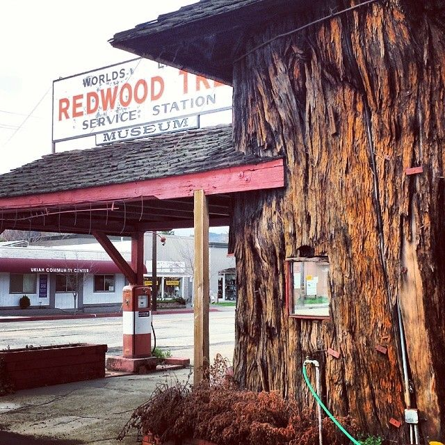 Redwood Tree Service Station Old gas stations, Gas station