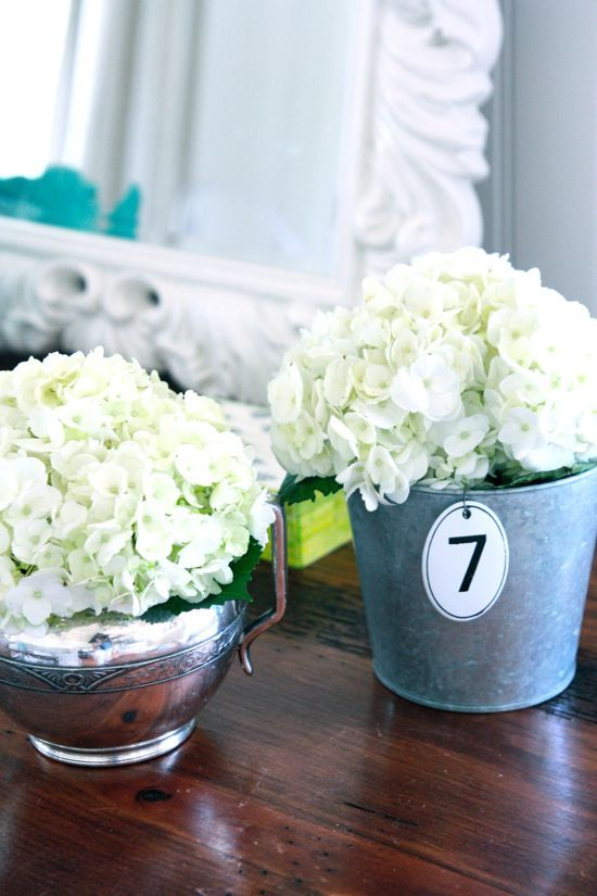 Beautiful hydrangeas in a tin can and a silver piece.