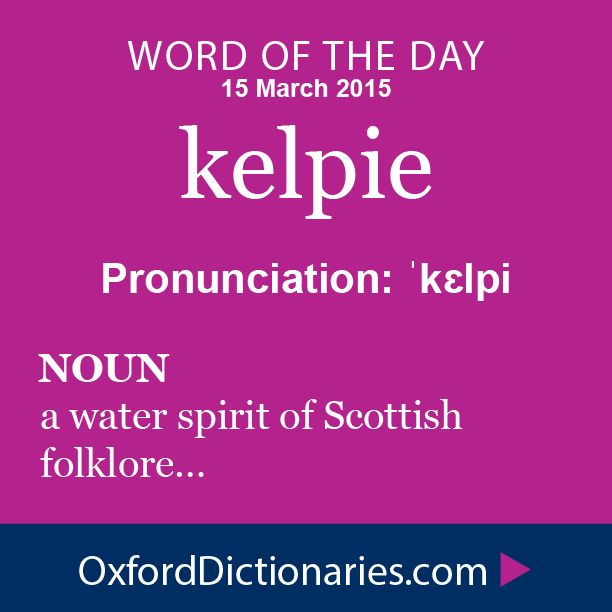 kelpie (noun): a water spirit of Scottish folklore, typically taking the form of a horse and reputed to delight in the drowning of travellers. Word of the Day for 15 March 2015. #WOTD #WordoftheDay #kelpie
