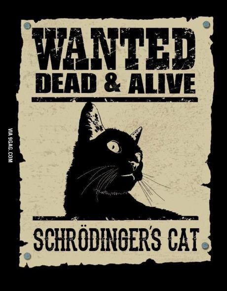http://en.wikipedia.org/wiki/Schr%C3%B6dinger's_cat