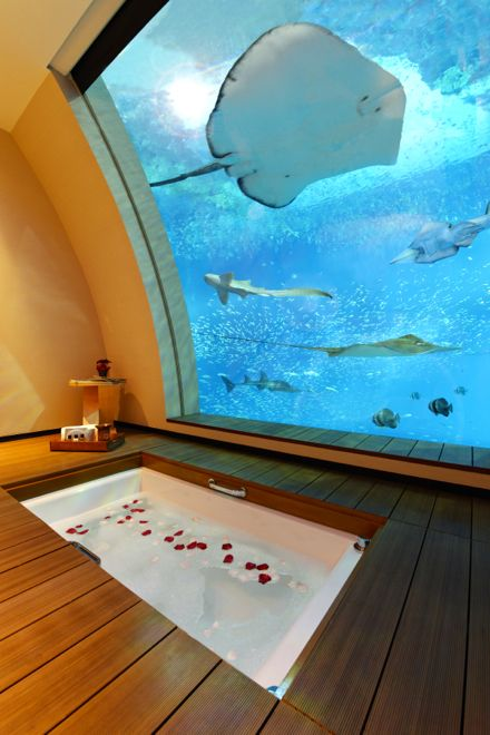 Underwater hotels... crazy cool photos. Wow. If i could just have one bath in this bath tub i'd be set for life!!!!!!!!