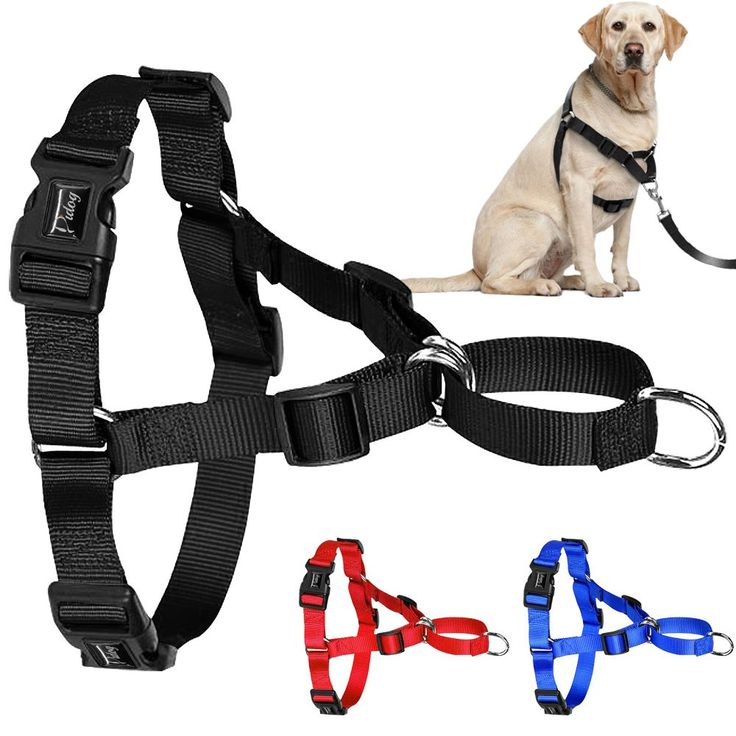 PDH001 Pitbull Dog Harness and Vest Fit for Medium Large Dog //Price: $17.48 & FREE Shipping //     #dog