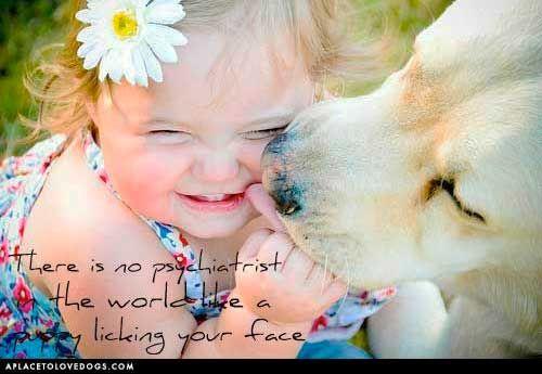 Truer words were never spoken!: Labrador Retriever, Dogs Cat, Pet, Dogs Lovers, Sweet Kiss, Baby, Smile, So Sweet, Animal