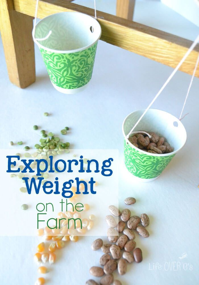 Exploring Weight on the Farm. Learn about different crops, create a DIY balance and more! A great STEM project for a farm theme!