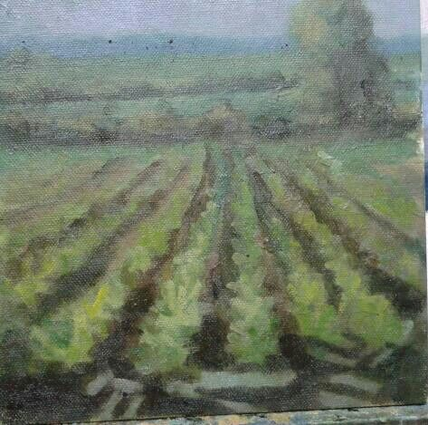 "A turnip field in garristown before the hail storm came in .7""x7""."