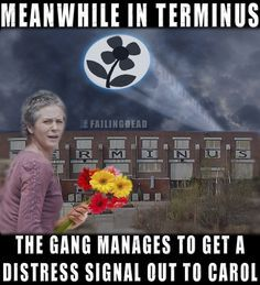 Look At The Flowers Gareth!! // The Walking Dead // Carol
