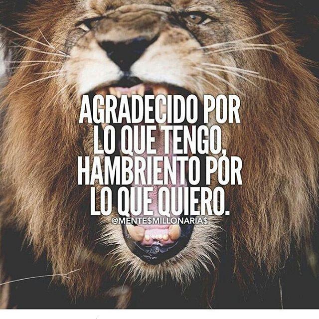 Exactamente!/@lamentedelmillonario  #lamentedelmillonario #theceo #danielpira #emprendedor #mentor #Dios #grandeza #motivation #familia #work #mundo #we #futuro #colombia #usa #mexico #argentina #2016#2017 #año #year