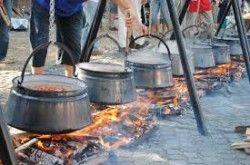 Fish and Beer Festival, Soltvadkert