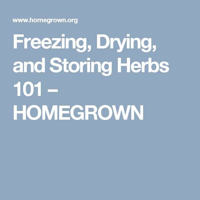 Freezing, Drying, and Storing Herbs 101 – HOMEGROWN