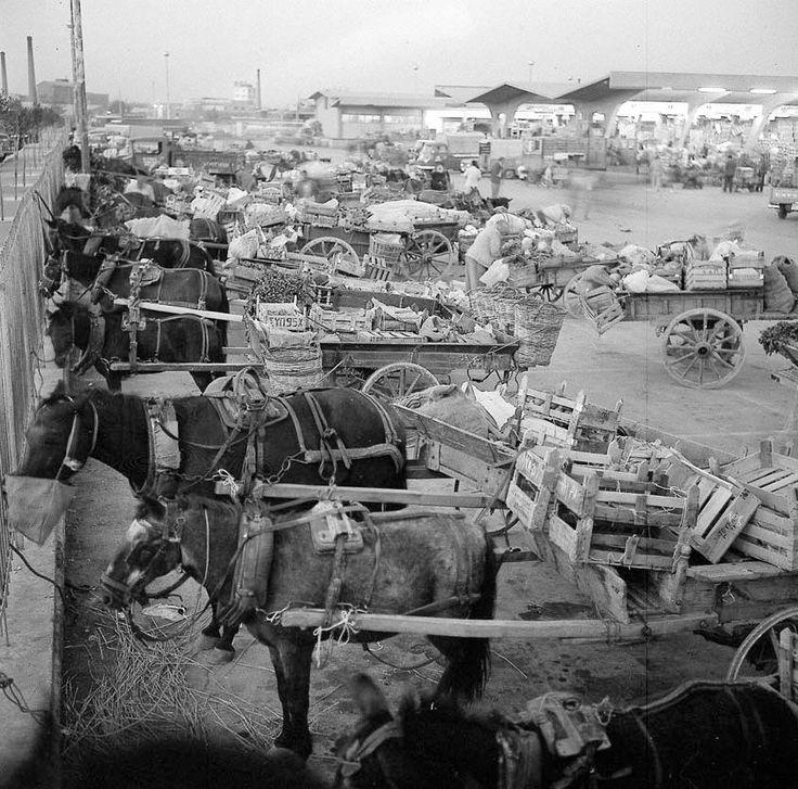 Πριν από μισό αιώνα, στα μέσα της δεκαετίας του ΄60, το χονδρεμπόριο δεν έχει ακόμη αντικαταστήσει τα γαϊδουράκια με φορτηγά και κάθε μέρα, οι πραματευτές γέμιζαν το προαύλιο της αγοράς στην καρδιά της Αθήνας.