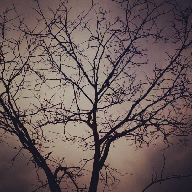 Kelam #instagram #sky #instandroid #andronesia #instahub #instago #instagramandroid @fotodroids - @andikobe- #webstagram