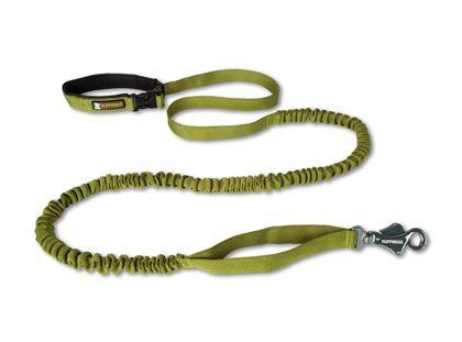 Ruffwear roamer leash... hands free walking, snowshoeing, running with the pup.