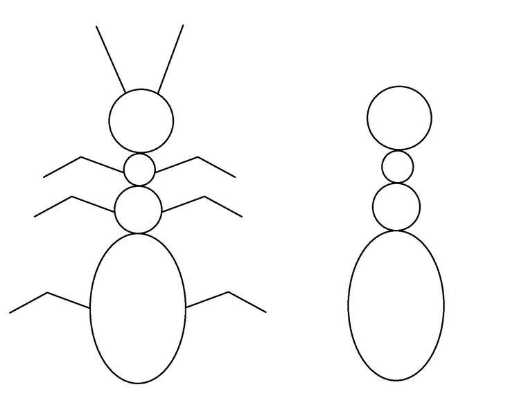Repasser la fourmi tracer les membres manquants