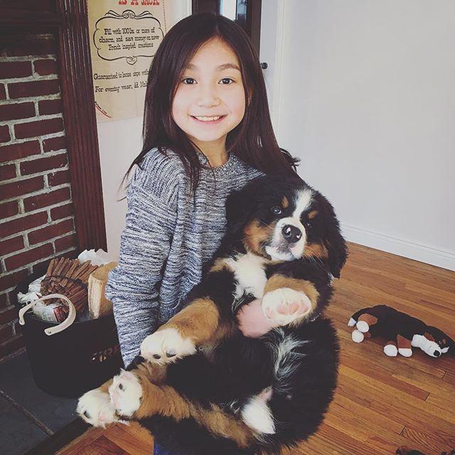 He is growing so fast!! 😆(我が家に玄が来てちょうど1週間。少し大きくなったかな?) #バーニーズマウンテンドッグ #bernesemountaindog #puppy #子犬 #パピー #大型犬のいる生活  #バーニーズ大好き #dogstagram #dog #愛犬 #もふもふ #いぬすたぐらむ #いぬすた #大型犬との暮らし #ワンコ #バーニーズマウンテンドック #バーニーズ  #バーニーズ子犬 #バーニーズらぶ
